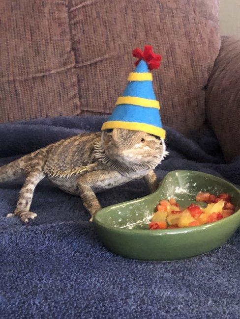 Happy Birthday Norbert!